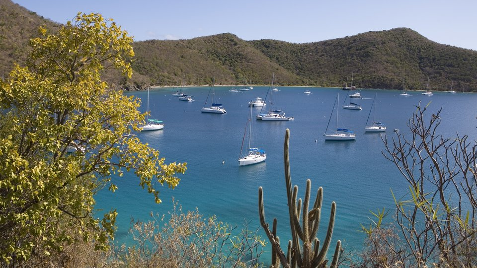 The Bight Bay (Norman Island), BVI